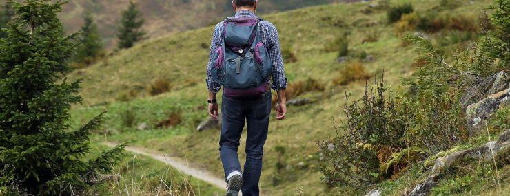 Things to Do   Marietta   Hiking   Kennesaw Mountain