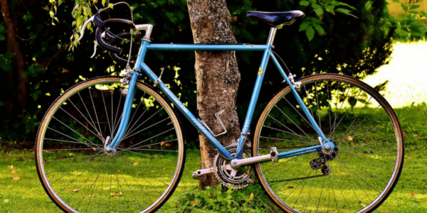 bicycle leaning against tree slider