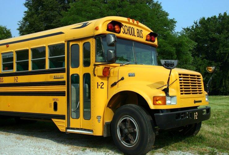 school-school-bus-stop