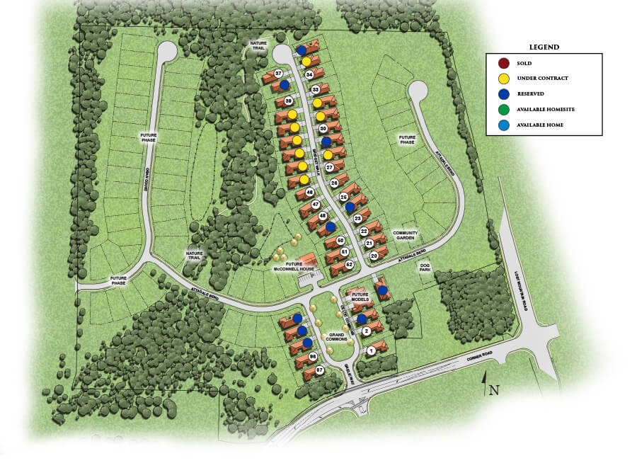 McConnell Green Site Plan | Active Adult 55 and over Community | Powder Springs 30127